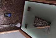 Sauna seca y sauna húmeda con ducha AT-002C